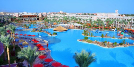 Albatros Palace Resort & Spa 5
