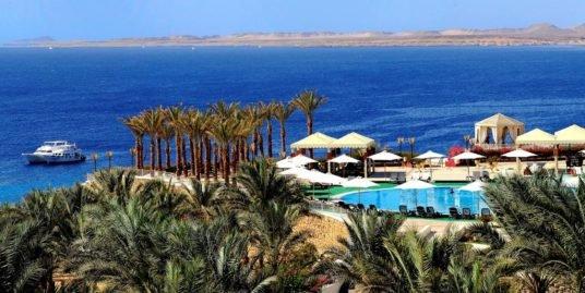 Выгодный тур — Reef Oasis Beach Resort 5