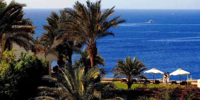 фото отеля Reef Oasis Beach Resort 5 звезд